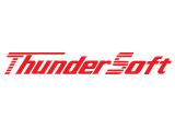 ThunderSoft Color Portfolio Logo